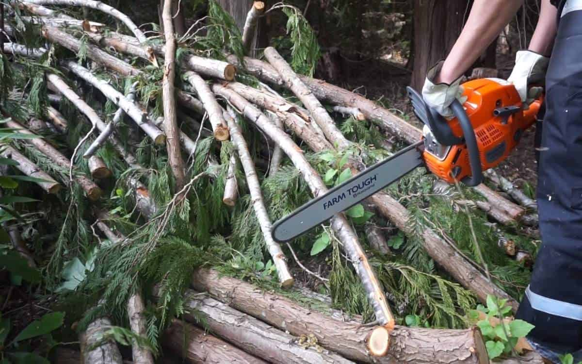 cutting-branches-with-husqvarna-professional-chainsaw
